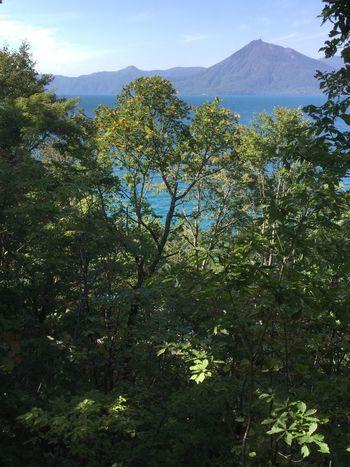 Lake Hokkaido Japan Japan Photography Sunny Day Clear Water Mountains Shikotsu Lake Blue Sky Green Trees areteta Alone