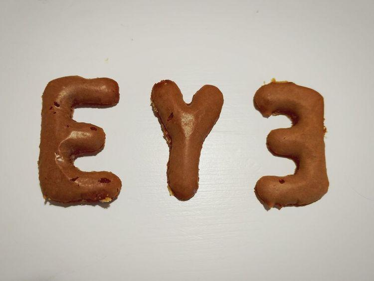 EM Gingerbread Logo Design
