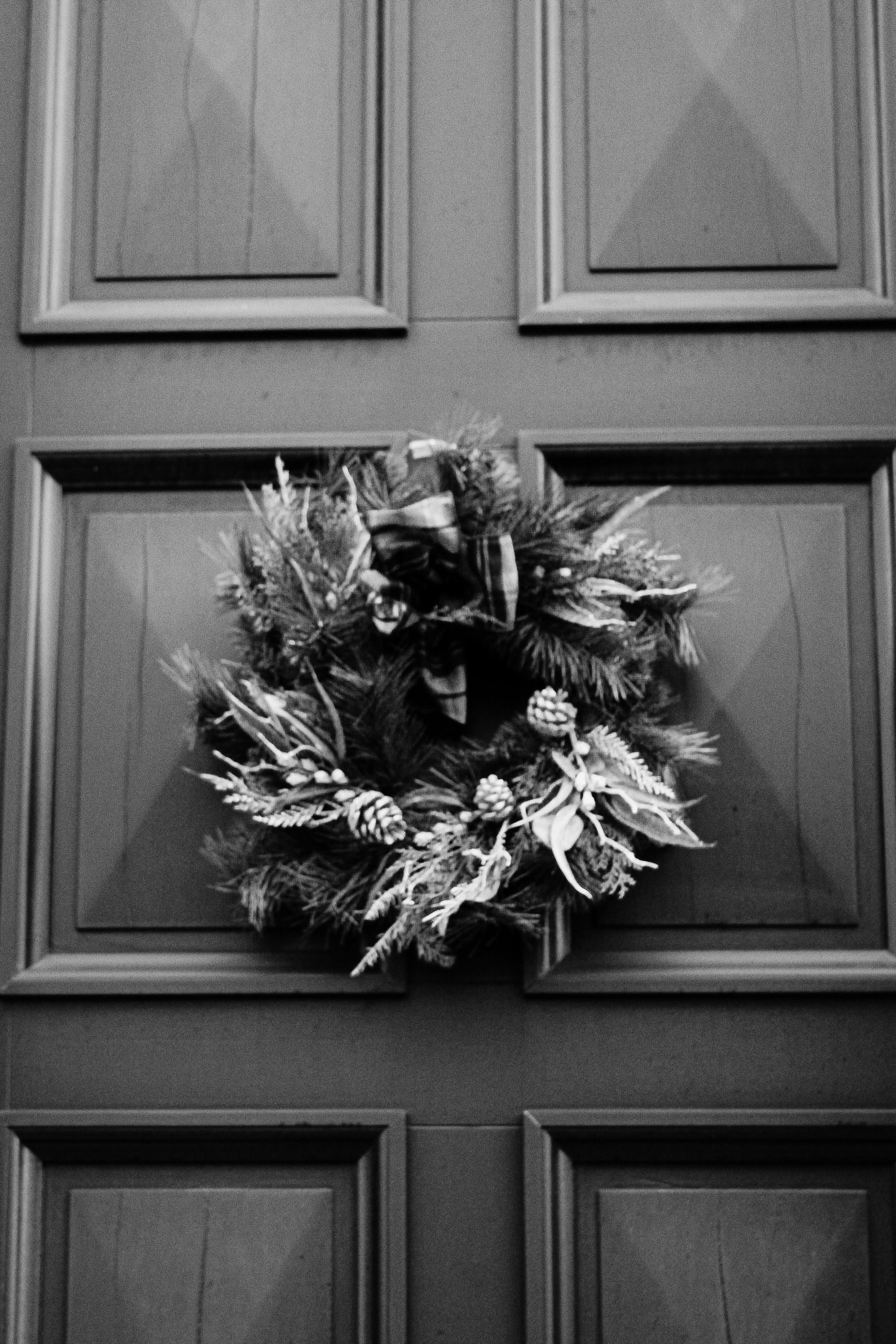 white, black, no people, black and white, plant, flower, monochrome photography, door, monochrome, indoors, wood, entrance, decoration, flowering plant, wreath, window, nature, still life photography, interior design, close-up, architecture