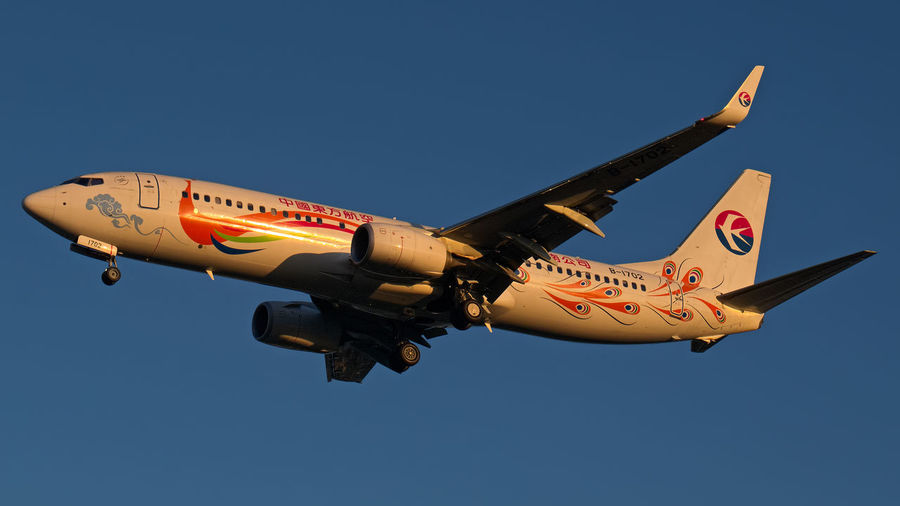 China Eastern B737-800 from Kunming on short final for runway 36 at the golden hour! 737-800 Airlines Boeing Boeing 737 China Eastern Golden Hour Landing Stage Low Angle View Mode Of Transport Sky Sunset