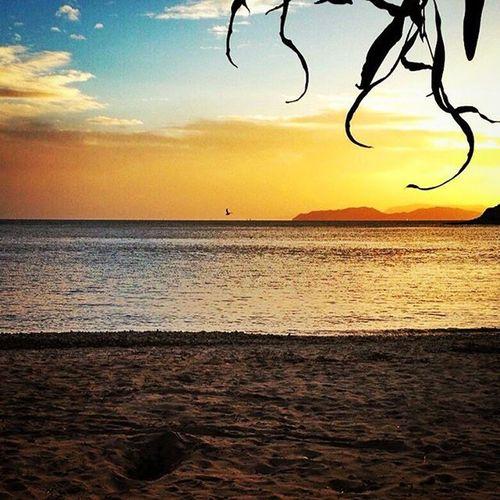 Sunset Cagliari Sardegna Sea Sky Ig_cagliari Loves_cagliari Loves_sardegna Amazing Loves_United_Sardegna Loves_united_cagliari Igerscagliari Instasardegna Volgosardegna Volgoitalia IG_PERLAS Volgocagliari Bestsardegnapics Lanuovasardegna Igersitalia Sardegna_super_pics Beach Italy Ilovesardegna Sardiniaphotos sardiniaexp perlas_sunset sardegna_bestsunset italia_bestsunset igw_skyline