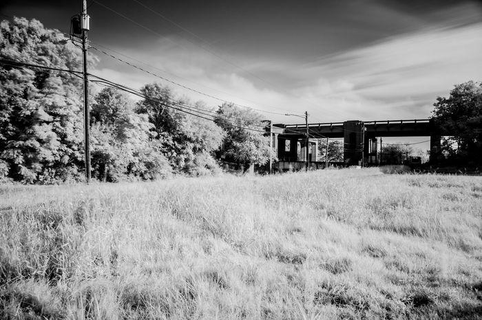 Ir Photography IR Shot IR Photo Ir Filter IR W/digital Camera Triple Decker Triple Decker Overpass Chesapeake Chesapeake Va B&w B&w Photography