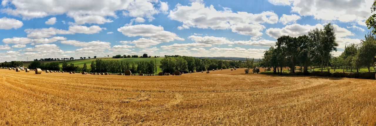 Brittany Panorama Agriculture Beauty In Nature Day Field Growth Landscape Maël-carhaix Nature No People Outdoors Rural Scene Scenics Sky Tranquility Tree