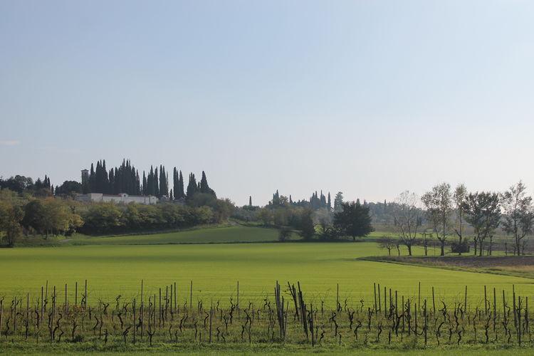 San Pietro Sky