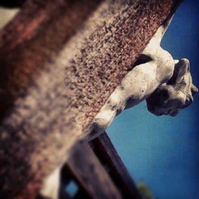 Gargoyle Instafy Instagram Instalove instafly instadaily fun picoftheday photoaday