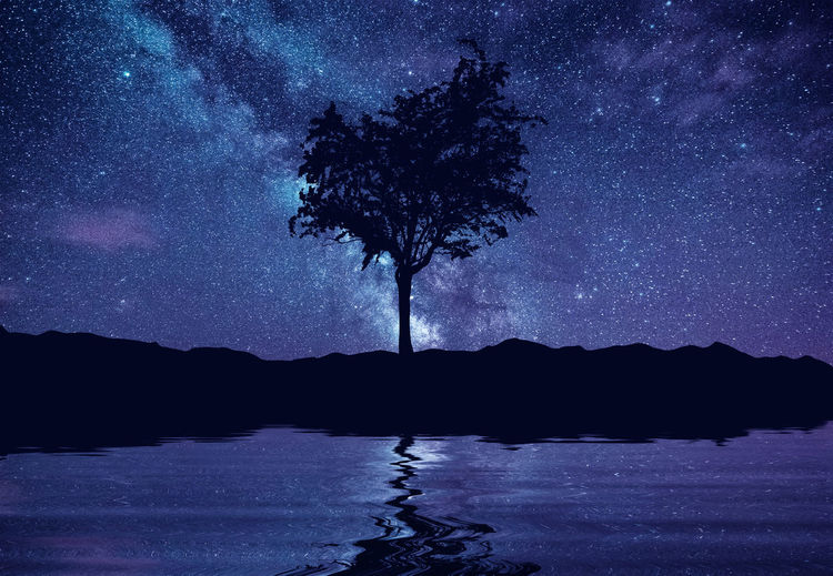 Idyllic shot of silhouette tree reflection in lake against constellation