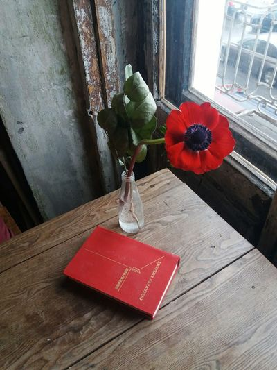 High angle view of red flower in vase on table