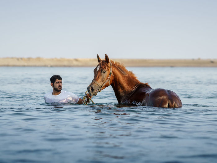 Man And Horse In Water
