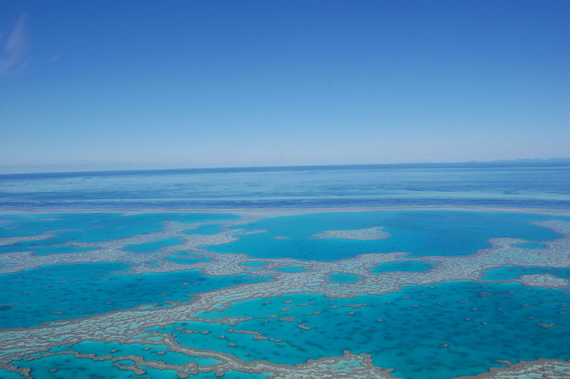 Aerial view of the reef Great Barrier Reef. Queensland. Australia Sea Blue Water Sky Horizon Scenics - Nature Horizon Over Water Beauty In Nature Beach Land Nature Clear Sky Day No People Tranquility Tranquil Scene Copy Space Urban Skyline Travel Destinations Outdoors Turquoise Colored Lagoon Bay Coral Reef Great Barrier Reef Queensland Australia
