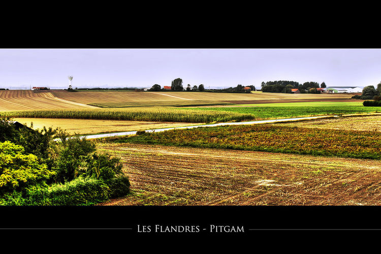 Les Flandres - Pitgam (France) Landscape Picoftheday France EyeEm Best Shots