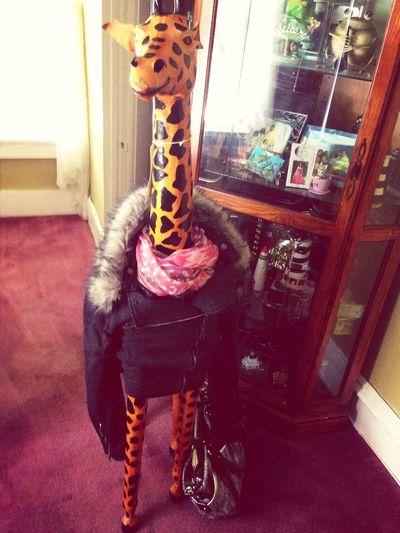 My Giraffe Tho