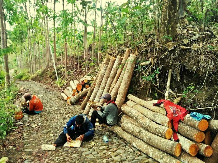working Work Working Working Hard Village Life Village Pekerja Life In Motion Life In Village Tree