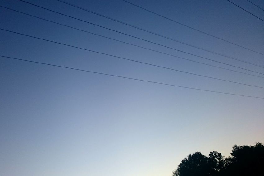 Cable Low Angle View Tree Power Line  No People Outdoors Sky Blue Nature Day Clear Sky Telephone Line Beauty In Nature