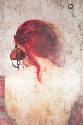 Animal Themes Animals In The Wild Close-up Day Full Length Indoors  No People One Animal Red Redhead Redink Rose🌹