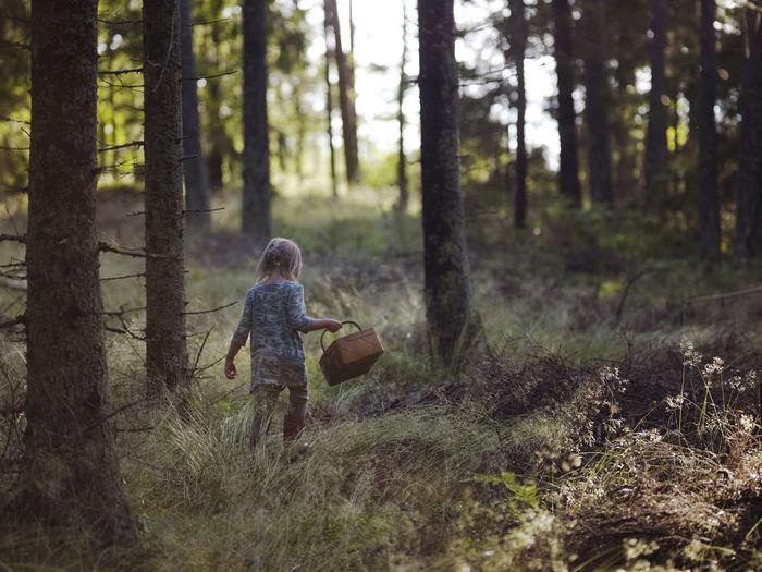 Full length of girl walking in forest