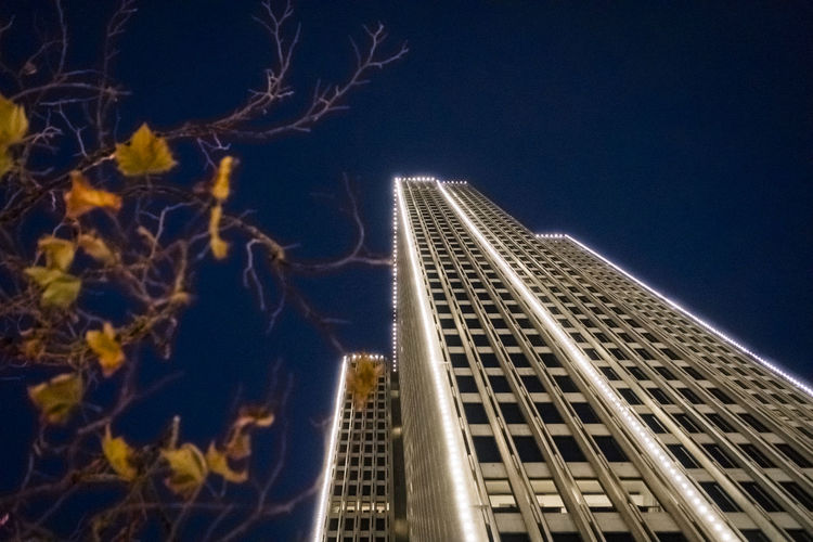 embarcadero at christmas, horizontal Architecture Blue Building Exterior Built Structure City Clear Sky Growth Illuminated Low Angle View Modern Nature Night No People Outdoors Sky Skyscraper Tall Tower Travel Destinations Tree Twin