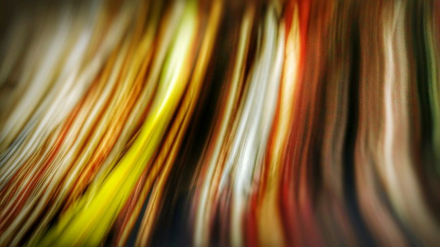 Nature Abst Abstract Colors Of Autumn Colors Whitewall