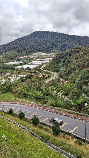 Car driving down a hill Car Hill Side Down Downhill Cameron  Malaysia Green Tree Mountain Road Rural Scene Sky Landscape Cloud - Sky Mountain Road Vehicle Valley Countryside Agricultural Field Remote Mountain Range Winding Road Physical Geography