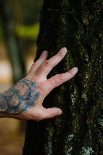 Cropped image of man with tattooed hand touching tree trunk at park