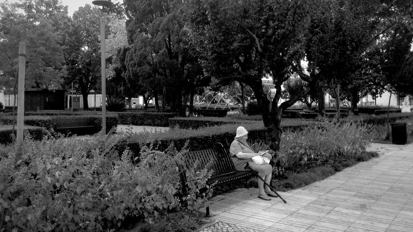 A leitora Urbanphotography Streetphotography Black & White Blackandwhite Photography Bench City Gardens Every Picture Tells A Story