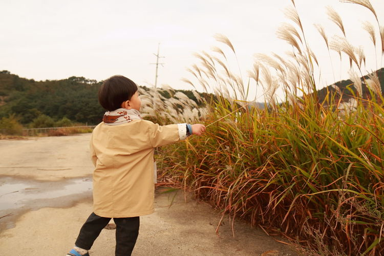 Boy playing with pampas grass at beach against clear sky