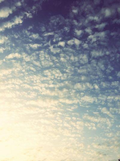 Cielo Clouds