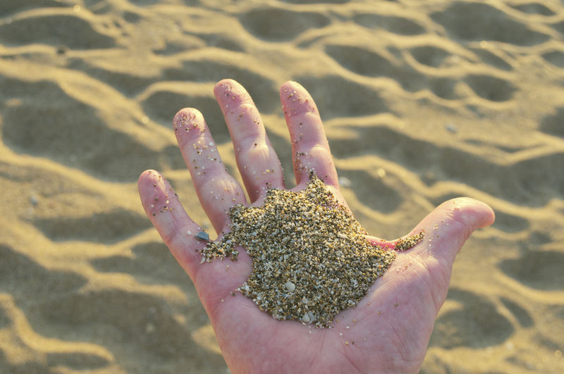 Close-Up Of Hand Holding Wet Sand On Beach