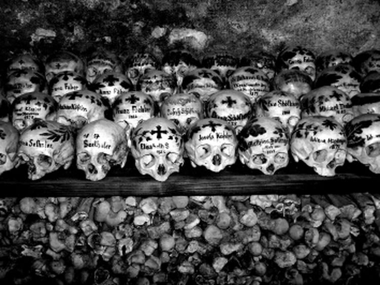Blackandwhite Graveyard Beauty Blancoynegro B+W I Want Your Skull