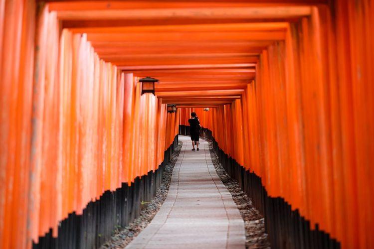 Japanese shrine, torii gates
