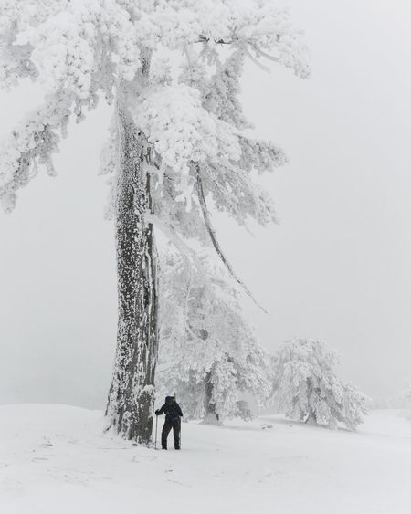 Rear view of mature man standing on snow covered land in forest