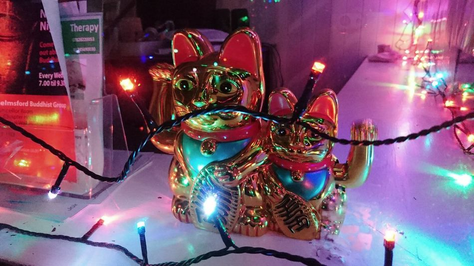 Christmas Illuminated Night Multi Colored No People Cats We Come In Peace Vibrant Colours Metallic Kitties Waving