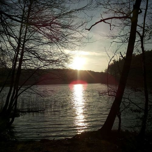 Reflection Sunset Lake Water Nature Beauty In Nature Tree Scenics Tranquility Tranquil Scene Silhouette Sun Sunlight Sky Sunbeam Idyllic Outdoors No People Bare Tree Landscape