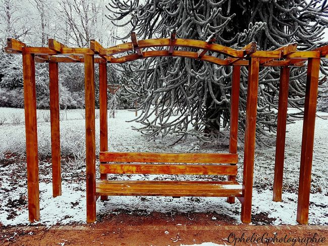 No People Promenade Tranquility Parc André Gagnon Authentic Moments Magnifique Park The Week On Eyem Beauty In Nature My Shot  Photography Beautiful Nature Snow Outdoors Chartres, France Hiver Chartres