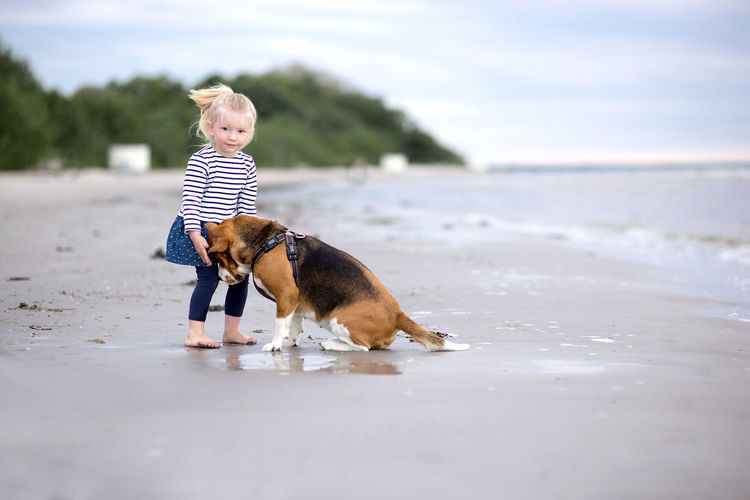 Little girl and her beagle dog on the beach Love Animal Themes Beach Beagle Best Friends Child Childhood Day Dog Domestic Animals Full Length Kid Mammal Nature One Animal One Person Outdoors Pets Real People Sea Sky Standing Toddler  Walking Water