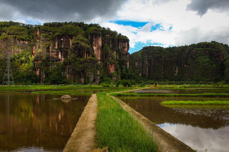 Views of rice fields set against harau valley cliffs