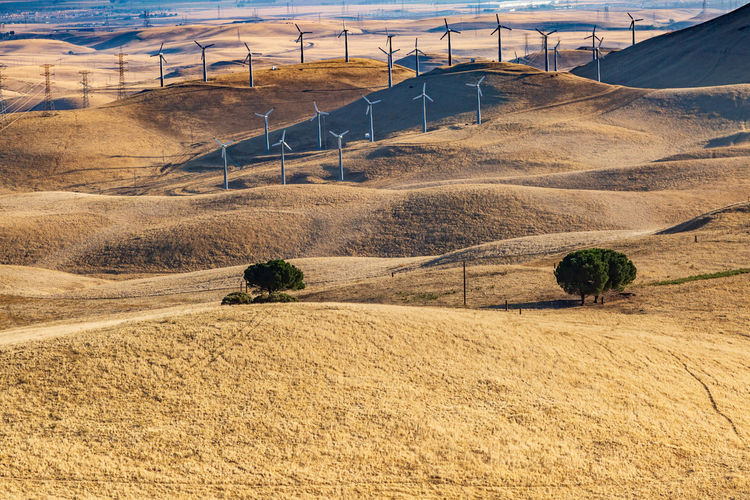 Wind turbines on the hills at Altamont Pass, in California Altamont Pass, Ca. California Drought Dry Arid Environment Landscape Land Nature No People Scenics - Nature Beauty In Nature Non-urban Scene Outdoors Wind Turbine Wind Farm Green Energy Fuel And Power Generation Beauty In Nature Hills Day Tranquility Rural Scene Tranquil Scene Sunlight