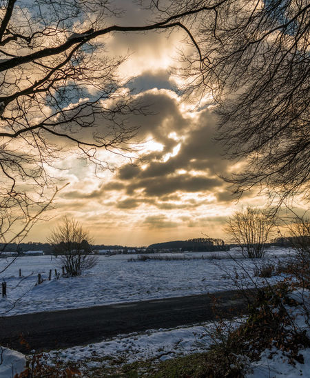 Bare Tree Beauty In Nature Branch Cloud - Sky Cold Temperature Day Nature No People Outdoors Scenics Sea Sky Snow Sunset Tranquil Scene Tranquility Tree Water Weather Winter