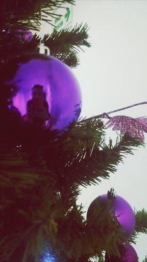 silueta en un reflejo Christmas Christmas Tree Merry Christmas! Colombia ♥