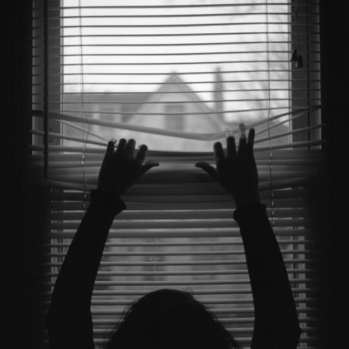 Silhouette woman holding blinds on window at home