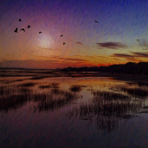 Low country at