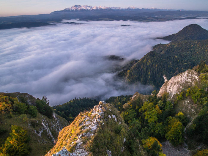 Mountain View Pieniny Poland Poland Tatra Mountains Tatry Beauty In Nature Cloud - Sky Day Environment High Angle View Land Mountain Nature No People Non-urban Scene Outdoors Pieniny Plant Scenics - Nature Sea Sky Tranquil Scene Tranquility Tree Water