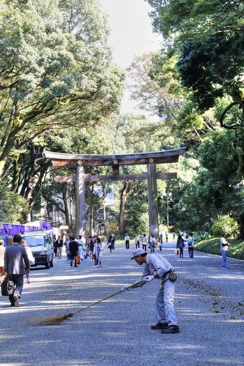 Arch Day Doorway Holiday Holiday Destination Japan Meiji Shrine Outdoors Tokyo TORII Tourist Attraction  Tree Road Sweeper Road Sweep