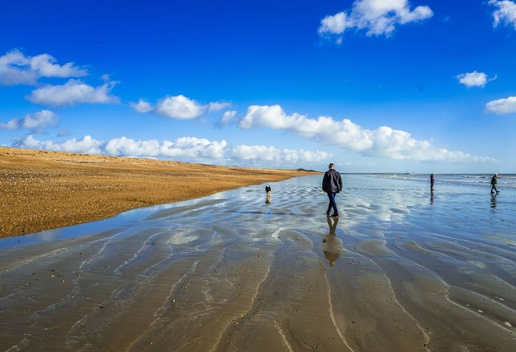 Rear View Of Man Walking At Beach Against Blue Sky