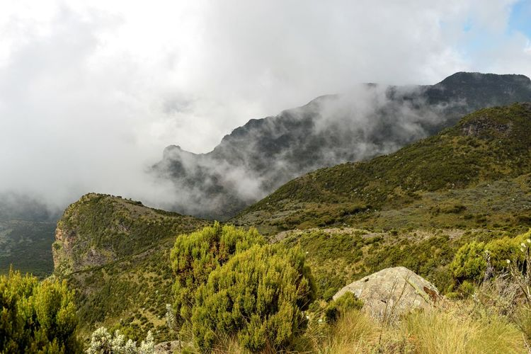 Scenic view of mountains against sky, aberdare ranges, kenya