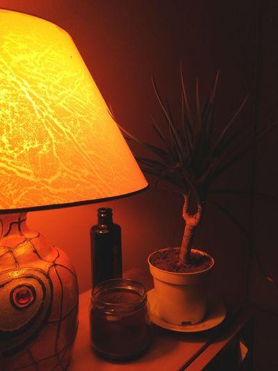 Electric Lamp Indoors  No People Close-up Night Moody Moods & Feelings Moody Lights Moody Lighting. Warm Light Cosy Cosy Light Cosy Place Cosy Home