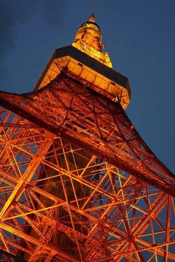 TOKYO tower 東京 東京タワー オレンジの照明 Orange Color 夜景 Tokyo Tower Tower