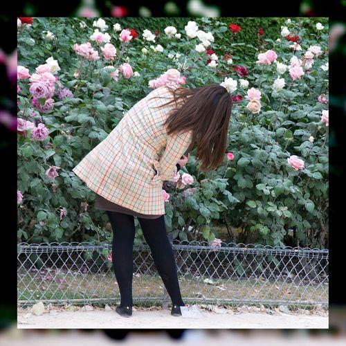 Gracieuse photographe. Photographer Japanese  EyeEm Flower Roses