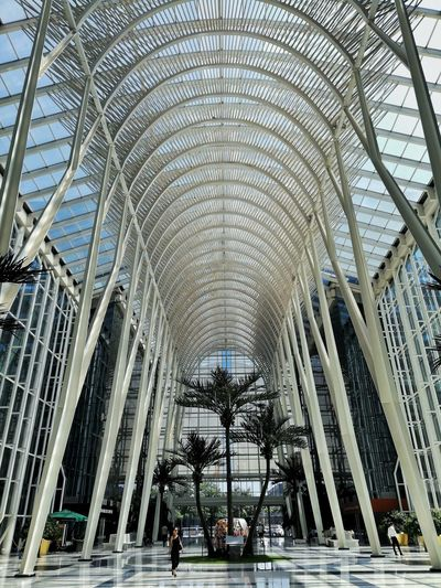 The Architect - 2018 EyeEm Awards Arch Architectural Column Architecture Built Structure Arcade Arcade Architecture And Art Architectural Design Ceiling Ceiling Colonnade Colonnade Cathedral Hanging Light Visiting Architectural Detail Pillar Recessed Light Ceiling Light  Light Skylight LINE Historic Place Of Worship Arched Architectural Feature Passageway Column Passage
