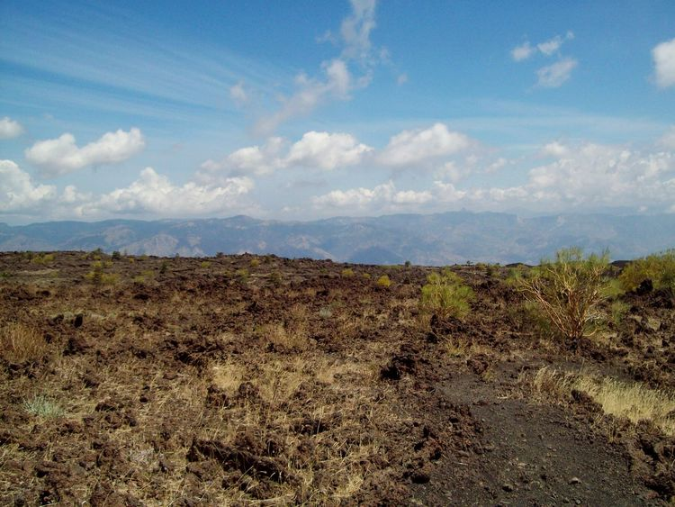 Nature Cloud - Sky Landscape Scenics Growth Outdoors No People Sky Day Travel Travel Destinations Tree Plant Mountain Etna Sicily
