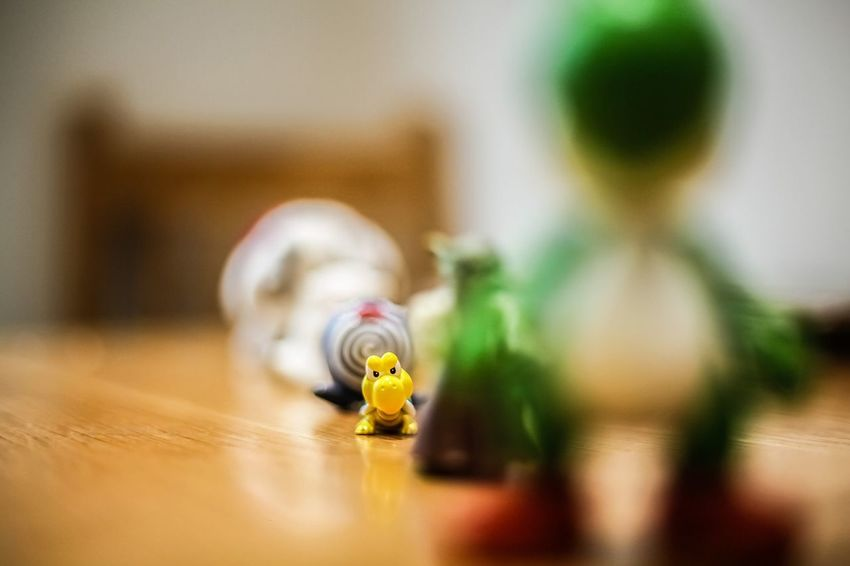Indoors  Table Selective Focus Close-up No People Day Stand Out From The Crowd Stand Out Stand Out From The Rest. Toys Life Lessons Life Lesson EyeEm Gallery EyeEmBestPics Reflection_collection Focused Hold Your Head Up High Animal Themes